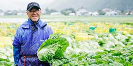 農家直送の国産白菜だけを使っています