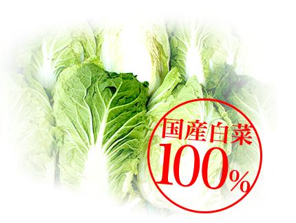 国産白菜100%